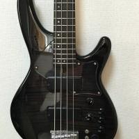 EDR-4